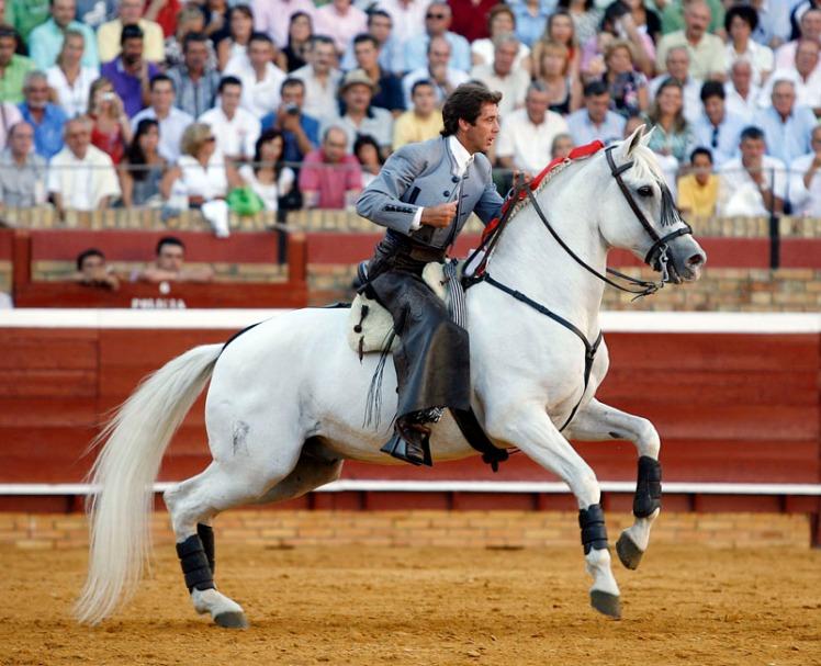 Fusilero-en-la-plaza-de-Sevilla