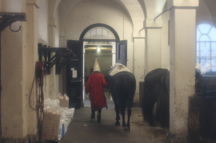 postlondonhorses (115)