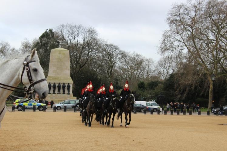 postlondonhorses (133)