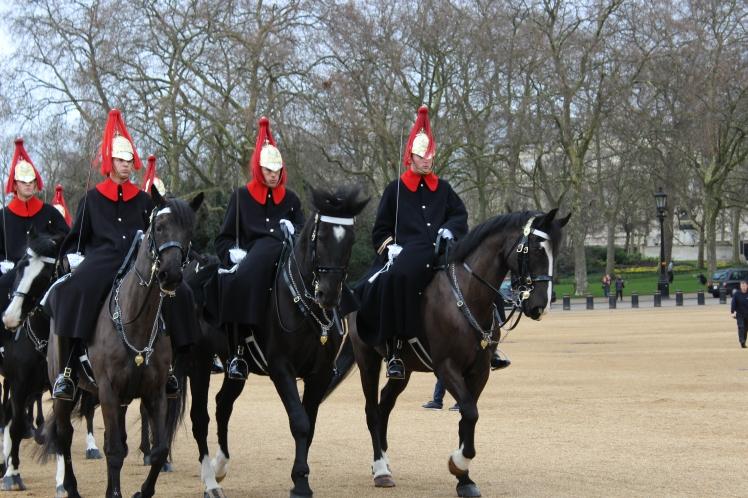 postlondonhorses (135)