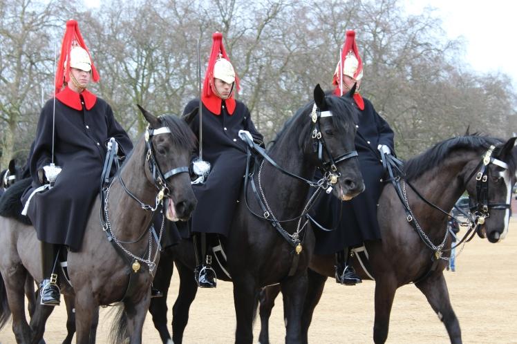 postlondonhorses (137)