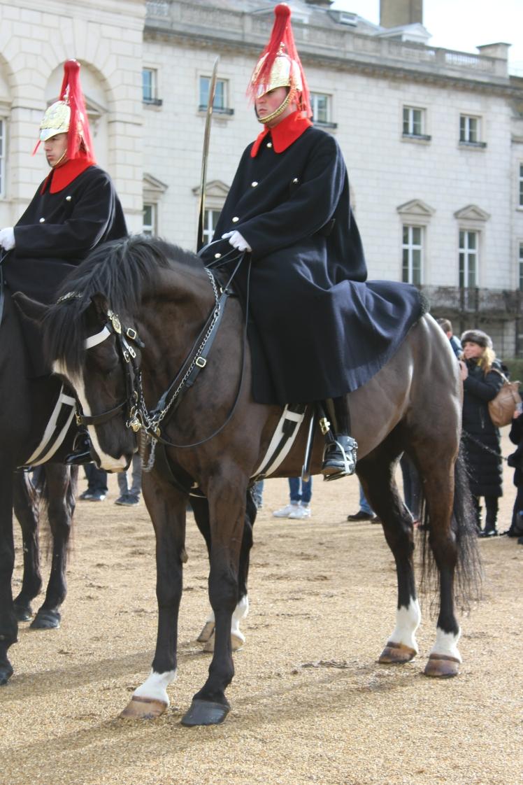 postlondonhorses (160)