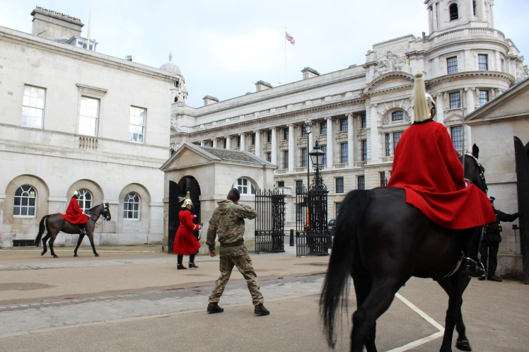 postlondonhorses (33)