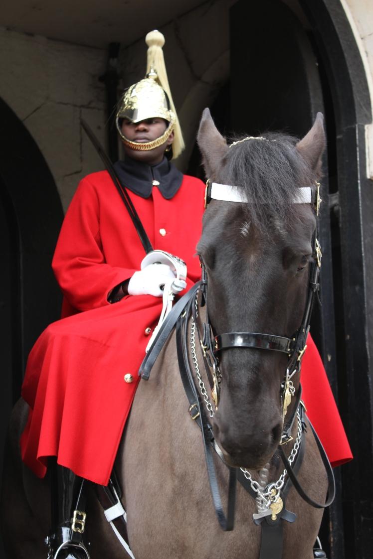 postlondonhorses (45)