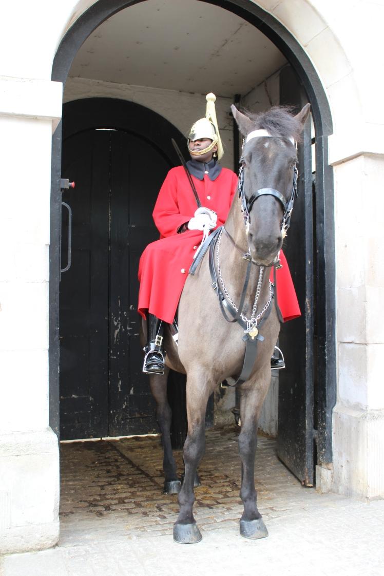 postlondonhorses (47)