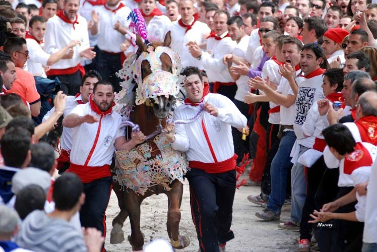 caballos-del-vino-2